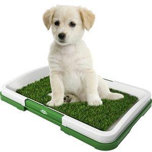 NWB PAW Puppy Potty Trainer Indoor …